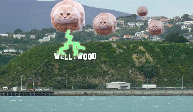 Wellingtonians against Wellywood