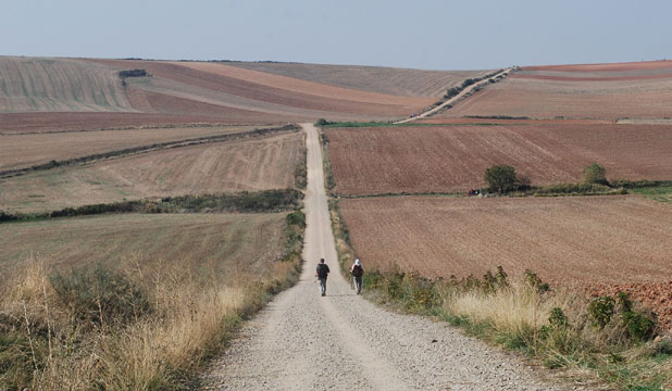 Camino