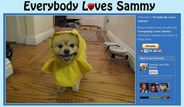 Everybody Loves Sammy