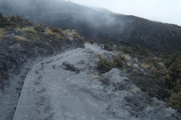 Tongariro Alpine Crossing track