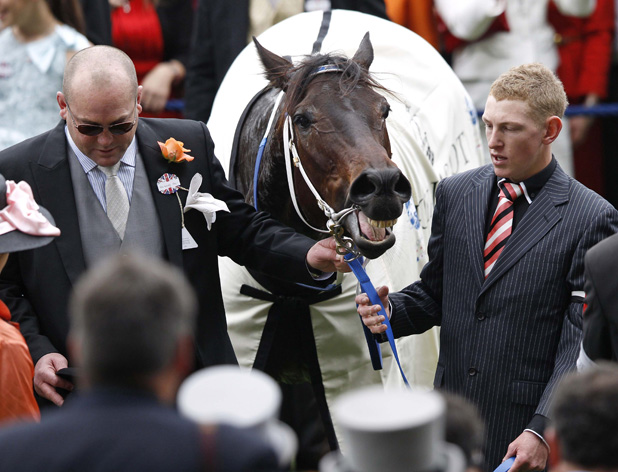 Right-hand man: Patrick Bell, right, handles the Peter Moody-trained Black Caviar after her Diamond Jubilee Stakes win.