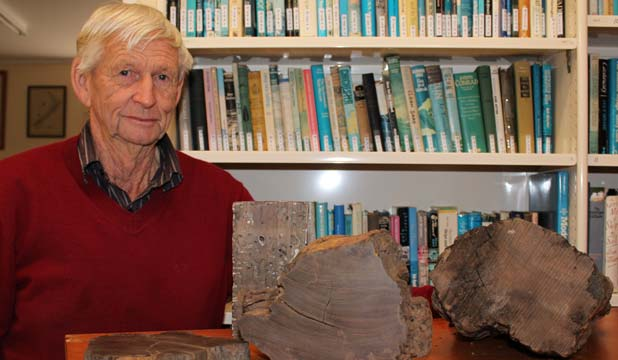 Dargaville Museum president Don Elliot has reason to be excited – a new discovery means the Dargaville museum may hold remains of the oldest known shipwreck in New Zealand.
