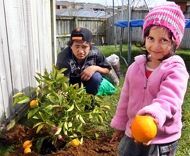 SWEET DEAL: Volunteer Ryan Harris, 15, with Pantea Soltani, 3, one of many children who are getting new fruit trees from a healthy living project, headed by the Western Community Centre.