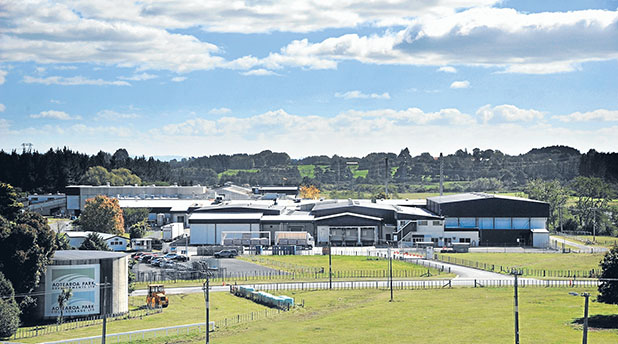 INDUSTRIAL OPPORTUNITY: The owners are hoping to attract large-scale buyers involved in the food processing industry to buy lots for sale on the outskirts of Aotearoa Park.