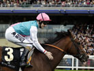 Frankel's earnings to rise