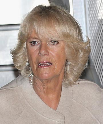 Duchess of Cornwall in New Zealand