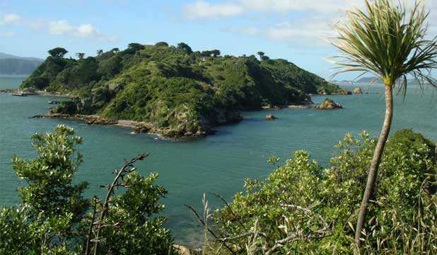 Matiu Somes Island