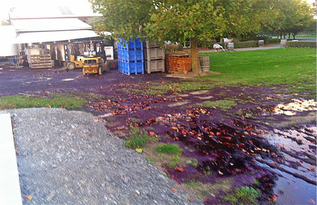 Act of vandalism will cost a Hawkes Bay Winery over $150,000.