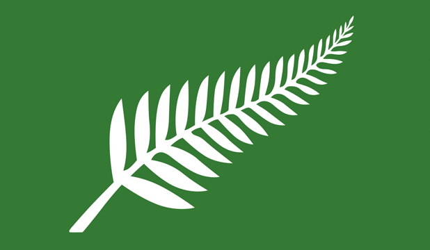 the sort of flag you might expect to see outside a shop in nimbin or somewhere in oregon - Flag Design Ideas