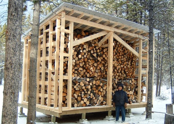 Here's the woodshed I wanted to build.