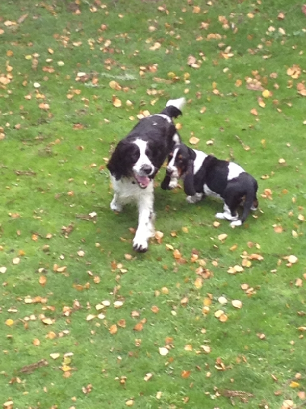 Monty and Elsie